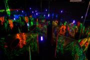 Лазертаг-клуб Багира в Липецке